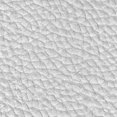 Antartica Blanco