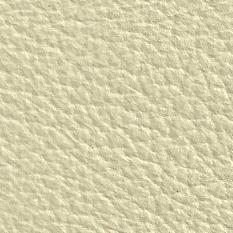 Antartica Crema